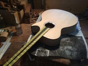 26_Acoustic_235